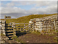 NY7968 : Hadrian's Wall, Knag Burn Gate by David Dixon
