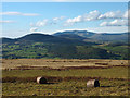 NY4823 : Bracken bales on Heughscar Hill by Karl and Ali
