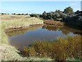 TF5658 : Small pond on the old saltmarsh, Gibraltar Point by Oliver Dixon