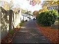SE1140 : Fernhill - Lady Lane by Betty Longbottom