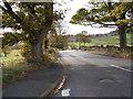SE1133 : Allerton Lane - viewed from Bracewell Avenue by Betty Longbottom