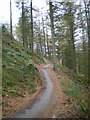 SJ2251 : MTB trail in Llandegla Forest by Richard Law