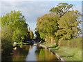 SJ6739 : Shropshire Union Canal near Adderley, Cheshire : Week 43