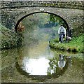 SJ7427 : Biking the dog, near Cheswardine, Shropshire : Week 43