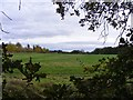 SO8791 : Himley Field View by Gordon Griffiths