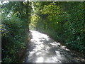 TQ4661 : Charmwood Lane by Marathon