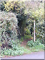 TM2851 : Jew's Lane footpath to Lodge Farm Lane by Adrian Cable