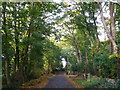 Dist:0.6km<br/>This road leads to several large houses along the road.