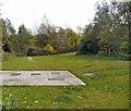 SJ9799 : Stalybridge Country Park by Gerald England