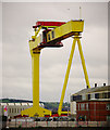 J3575 : 'Goliath', Belfast by Rossographer