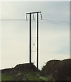 TA1567 : Electricity supply poles in farmland  by JThomas