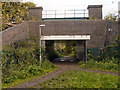 SJ8487 : Underpass to Borrowdale Avenue by David Dixon
