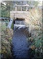 NJ7806 : Sluice gate at Leadside by Stanley Howe