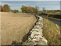 NT5328 : Roadside wall near Eastfield by M J Richardson