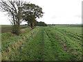 TL5083 : West Fen Drove by Hugh Venables