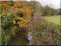 SJ8483 : River Bollin at Linney's Bridge by David Dixon