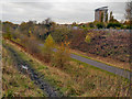 SJ8894 : National Cycle Route 6, Fallowfield Loop Line by David Dixon