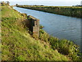 TL3095 : Whittlesey Dike near Angle Corner Bridge by Richard Humphrey