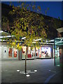 SO8454 : Tree in the Crowngate shopping centre by Philip Halling