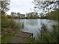 TL3098 : Feldale Lake in Coates near Whittlesey by Richard Humphrey
