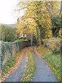 SJ7483 : Lane below Rostherne Church by Trevor Harris
