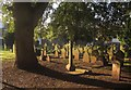 SX9165 : Gravestones, St Marychurch by Derek Harper