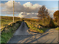 SJ9997 : Track to Moorside Farm by David Dixon