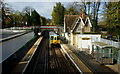 TQ3260 : Kenley Railway Station, Surrey by Peter Trimming