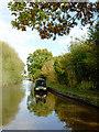SJ6151 : Llangollen Canal near Stoneley Green, Cheshire by Roger  Kidd