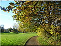 TQ2169 : Malden Golf Course in autumn by Ian Yarham