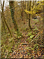 SJ9691 : Footpath Below Compstall Brow by David Dixon
