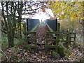 SJ6687 : Footbridge over Trans Pennine Trail, Lymm by Anthony O'Neil