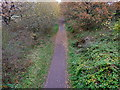 SJ6787 : Trans Pennine Trail on western outskirts of Lymm by Anthony O'Neil