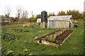 SK7156 : Organic vegetable garden by Richard Croft