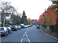TQ3273 : Autumn on Burbage Road, Dulwich by Malc McDonald