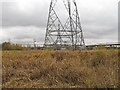 TQ5579 : Pylons on the marsh by Roger Jones
