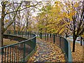 ST3188 : Autumn leaves on a footbridge, Newport by Robin Drayton