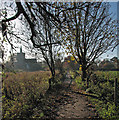 TL4748 : Footpath to  Whittlesford by John Sutton