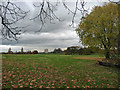 TQ3173 : Brockwell Park (3) by Stephen Richards