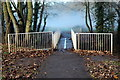 TQ3299 : Bridge over the Cuffley Brook Whitewebbs Park, Enfield by Christine Matthews