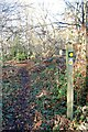 TQ7098 : Footpath Junction Waymark by John Myers