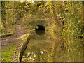 SJ9490 : Peak Forest Canal, Hyde Bank Tunnel by David Dixon