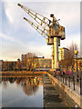 SJ8197 : Dockyard Cranes, Ontario Basin by David Dixon