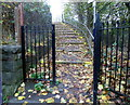 SO8005 : Steps up to Stonehouse railway station by John Grayson