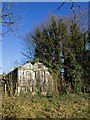 TL4953 : Derelict building by the footpath by David P Howard