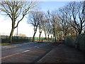 TA0732 : Inglemire Lane, Hull by Ian S