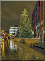 SJ8498 : Piccadilly Gardens Christmas Tree, Manchester by David Dixon