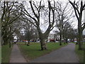 TQ2773 : Path junction on Wandsworth Common by David Anstiss