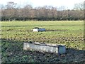 SJ7668 : Cattle troughs in a muddy pasture field by Christine Johnstone