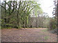 SX9082 : Former road, Haldon by Derek Harper